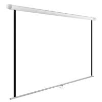 Экран Cactus 125x200см WallExpert CS-PSWE-200x125-WT 16:10 настенно-потолочный рулонный