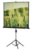 Экран на треноге Lumien 153x153см Master View LMV-100102 1:1 напольный рулонный