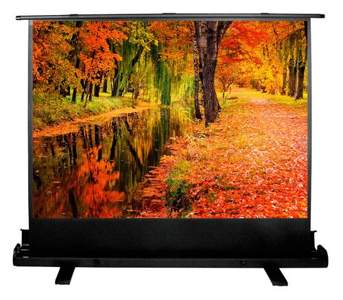 Экран Cactus 150x200см FloorExpert CS-PSFLE-200X150 4:3 напольный рулонный
