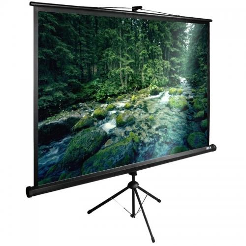 Экран Cactus 165x220см TriExpert CS-PSTE-220х165-BK 4:3 напольный рулонный
