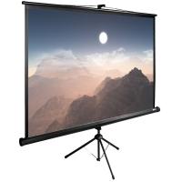 Экран Cactus 180x180см TriExpert CS-PSTE-180x180-BK 1:1 напольный рулонный