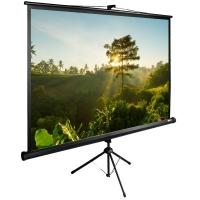 Экран Cactus 200x200см TriExpert CS-PSTE-200х200-BK 1:1 напольный рулонный