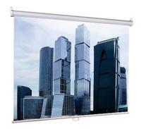Экран Lumien 150x150см Eco Picture LEP-100101 1:1 настенно-потолочный рулонный