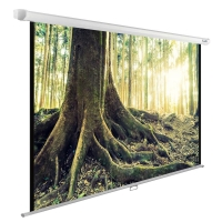 Экран Cactus 220x220см WallExpert CS-PSWE-220x220-WT 1:1 настенно-потолочный рулонный
