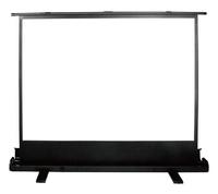 Экран Cactus 68x120см FloorExpert CS-PSFLE-120X68 16:9 напольный рулонный