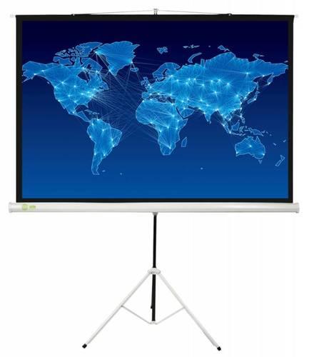 Экран Cactus 150x150см Triscreen CS-PST-150x150 1:1 напольный рулонный белый