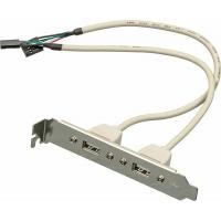 Адаптер USB Bracket 2xUSB2.0 Bulk